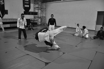 judo-333779_640.jpg